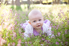 Pure [Canberra Baby Photographer]