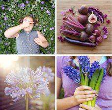 Purple [Canberra Portrait Photographer]